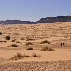Fatbikes dans le désert Mauritanien