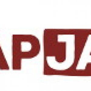 Logo FlapJack